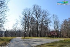 Park podworski w Klimkówce
